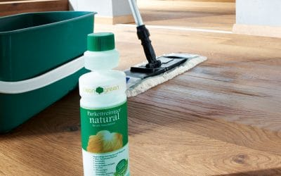 Cleaning Myths – Not like this please!